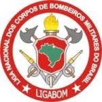 ligabom_logo